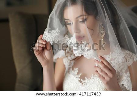 Closeup shot of elegant, brunette bride in vintage white dress posing under veil closeup. Bride portrait wedding makeup and hairstyle with diamond crown, fashion bride. Beautiful bride in veil - stock photo