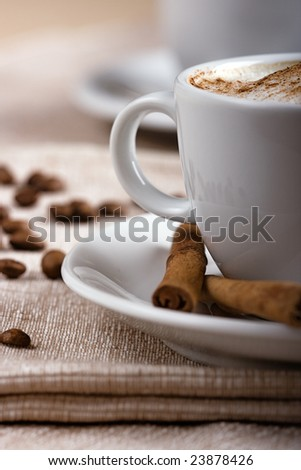 Closeup shot of freshly prepared cup of italian cappuccino with rich milk foam sprinkled with cinnamon. - stock photo