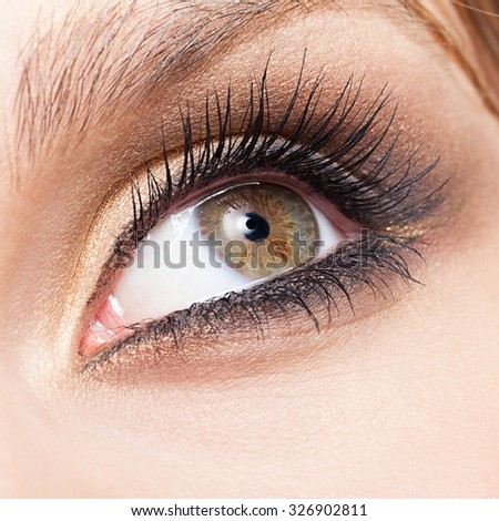 Closeup shot of woman eye with day makeup - stock photo