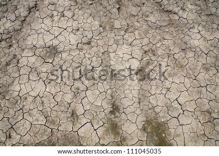 Closeup texture of dry cracked dirt