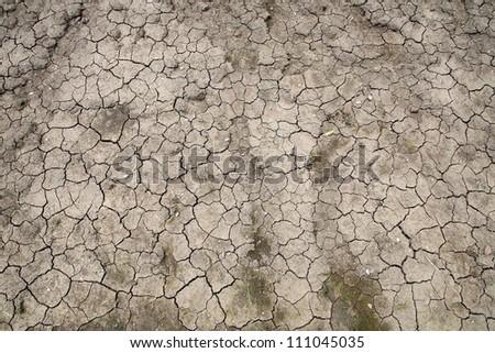 Closeup texture of dry cracked dirt - stock photo