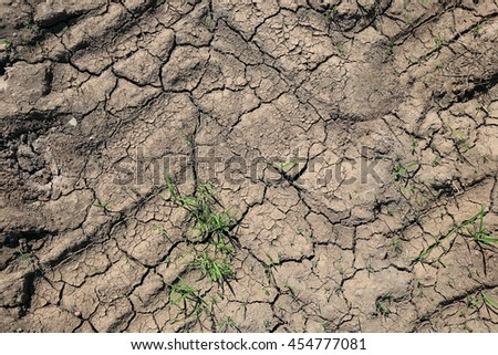 closeup texture of the dry cracked earth in the field on a dirt road  - stock photo