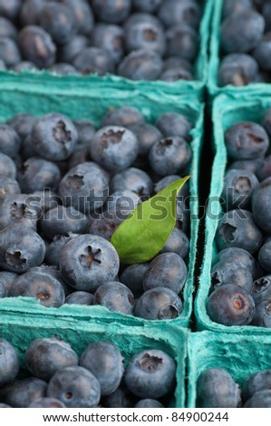 Closeup Vertical of Freshly Picked Blueberries - stock photo