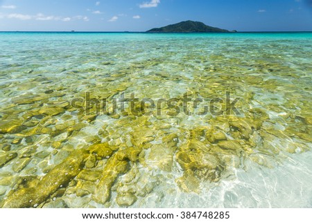 closeup view from a boat of the formations of coral under the water - stock photo