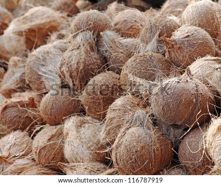 Closeup view of a pile of dehusk coconut fruit. - stock photo