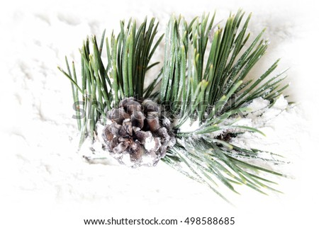 Closeup view of a snow covered pine cone and tree needles.