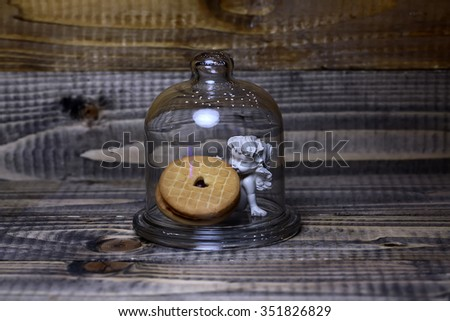 Closeup view of beautiful cupid angel decorative figurine with round tasty biscuits under glassy flask indoor on dark brown wooden background, horizontal picture - stock photo