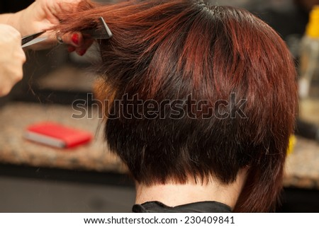 Closeup view of client's head meanwhile hairdresser cuts her hair. - stock photo