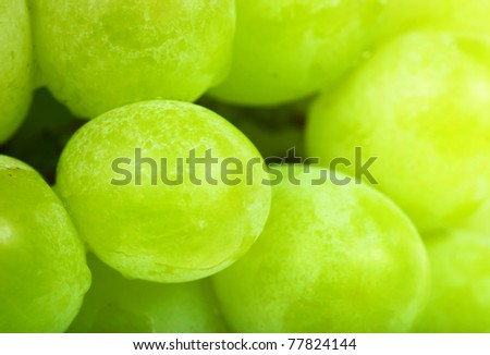 Closeup view of green grapes - stock photo