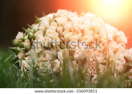 Closeup view of one beautiful fresh bright white yellow big wedding bouquet of rose flowers lying on green grass sunny day outdoor on natural background, horizontal picture - stock photo