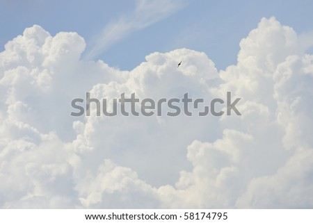 Clouds and Flying Eagle - stock photo