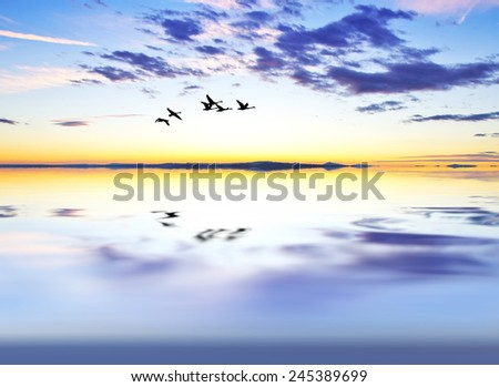 clouds in water - stock photo