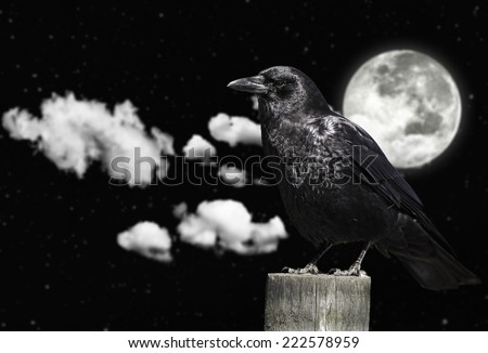 Clouds. moon and the crow - stock photo