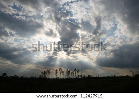 clouds over woods with sun rays - stock photo