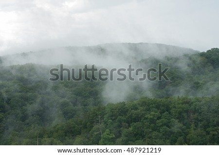 Clouds swirling in the treetops of the Appalachians