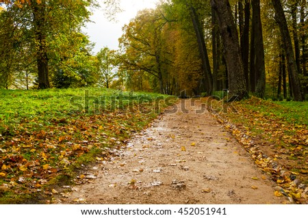 Cloudy autumn landscape view of park with autumn with fallen autumn leaves, soft focus applied - beautiful autumn landscape in cloudy weather with yellowed autumn trees along the autumn alley - stock photo