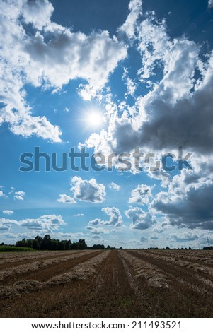 cloudy sky and golden field after harvesting in late summer - stock photo