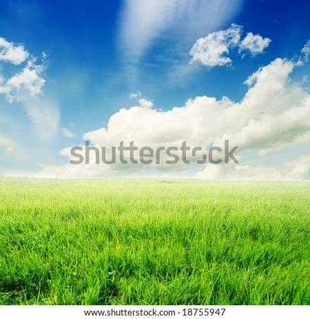 cloudy sky and green field