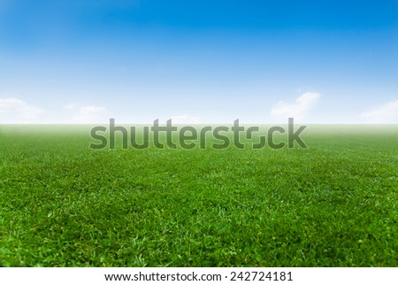 Cloudy sky over green field - stock photo