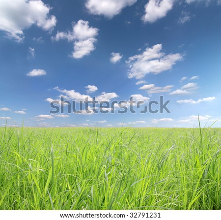 cloudy sky with wide meadow