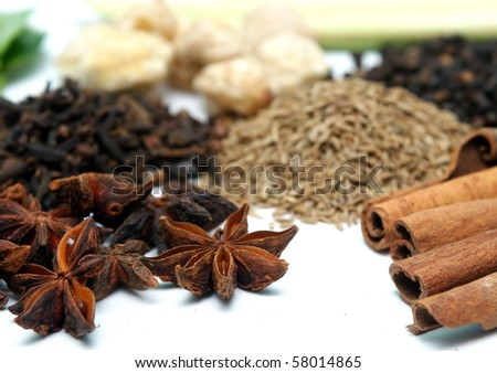 clove and cinnamon in group of spices - stock photo