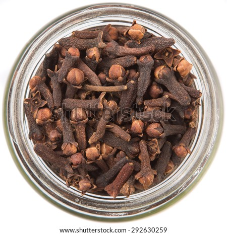 Clove spices in a mason jar over white background