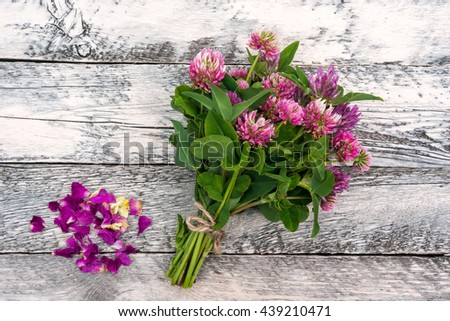Clover flowers bouquet with dry petals on painted wooden background. Top view.  Red clover used as an herbal remedy to treat the immune system. - stock photo