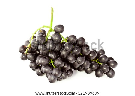 cluster of black grape isolated on white background - stock photo