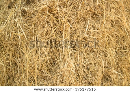 Cluster straw, truss straw - abstract background  - stock photo