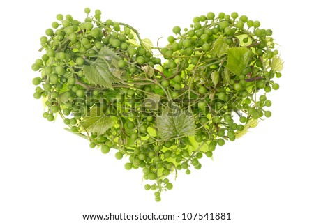 Clusters of green European garden unripe grapes as human heart concept. Isolated - stock photo