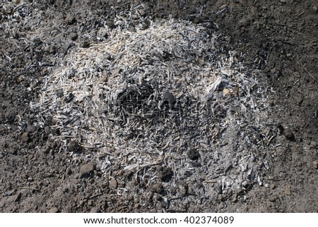 Coal and ash from the fire - stock photo