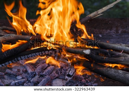 Coal,fire,firewood in the brazier