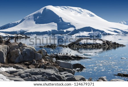 Coast of Antarctic Peninsula. Excellent sunny weather. Colonies of penguins. Clear blue sea water. Snow and icebergs of Antarctica. - stock photo