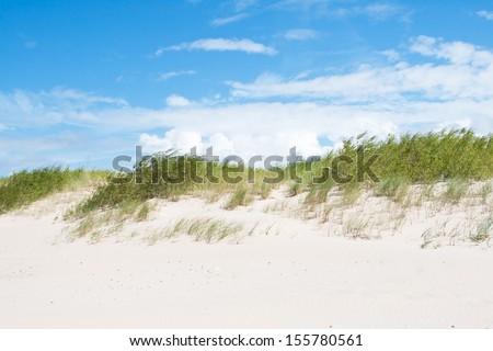 Coast of Baltic sea in Latvia - stock photo