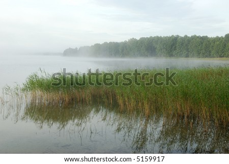 Coast of lake in the morning - stock photo