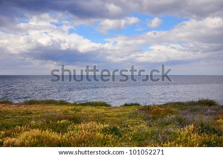 Coast of Mediterranean Sea with flowers end clouds. - stock photo