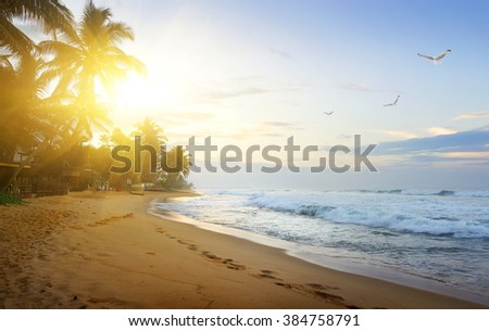Coast of the ocean - stock photo