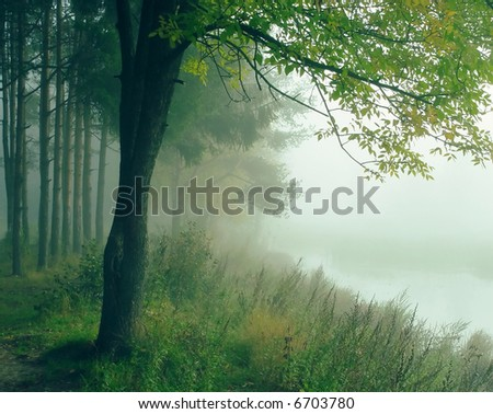 Coast of the river - stock photo