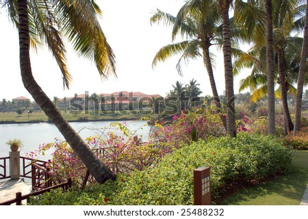 Coast of the southern sea, tropical garden with palm trees, Sanya, China - stock photo