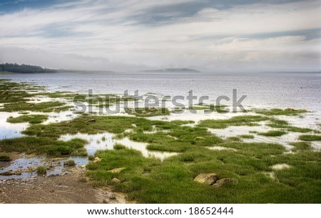 Coast of the St-Lawrence River on a misty morning - stock photo