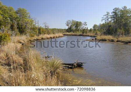 Coastal Inlet in North Carolina along Pamlico River - stock photo