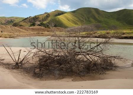 coastal lagoon and rolling green pastoral hills, East Coast, New Zealand  - stock photo