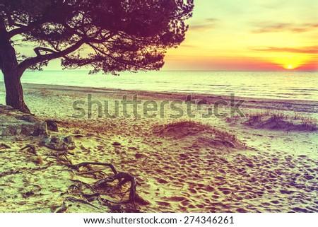 Coastal landscape in Saulkrasti - famous resort in Baltic region, Latvia, Europe. Image toned with instagram retro style effect - stock photo
