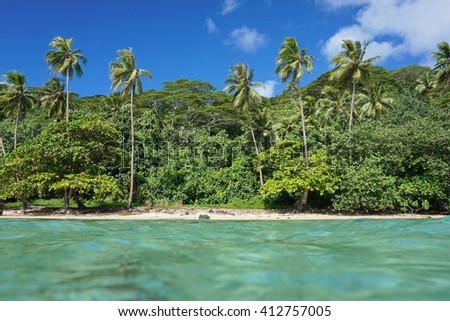 Coastal landscape of a tropical shore with lush vegetation, seen from water surface, Huahine Nui island, Pacific ocean, French Polynesia - stock photo