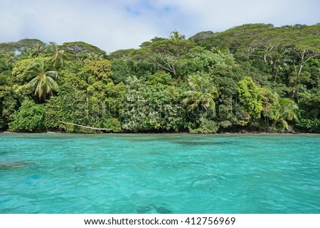 Coastal landscape with turquoise water and lush forest on untouched tropical shore, Huahine island, Pacific ocean, French Polynesia - stock photo