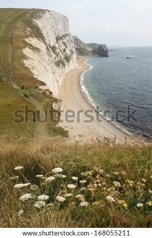 coastal path in Dorset - stock photo