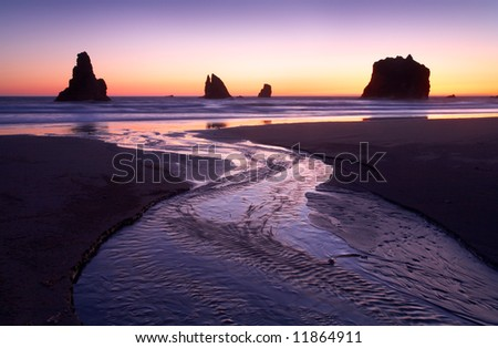Coastal Stream Oregon - stock photo
