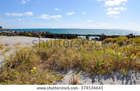 Coastal vegetated dunes with concrete breakwater on the Indian Ocean coast in Fremantle, Western Australia/Coastal Breakwater/Fremantle, Western Australia