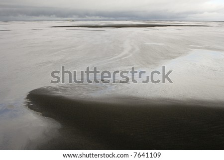 coastal wetlands - stock photo