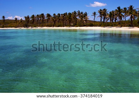 coastline and rock in the  blue lagoon relax  of isla contoy  mexico - stock photo